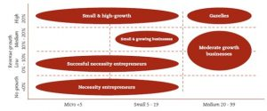 SMEs segmentation